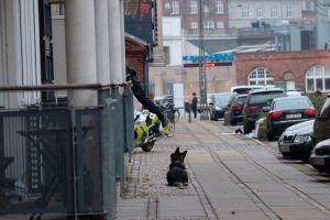 Tres policías heridos en un tiroteo en conferencia de caricaturista en Copenhague